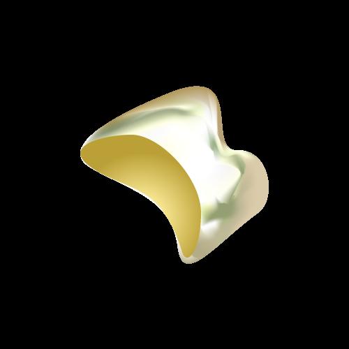 中台寿一歯科医院 歯周病治療 FMC